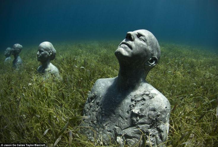 man in seaweed looking up
