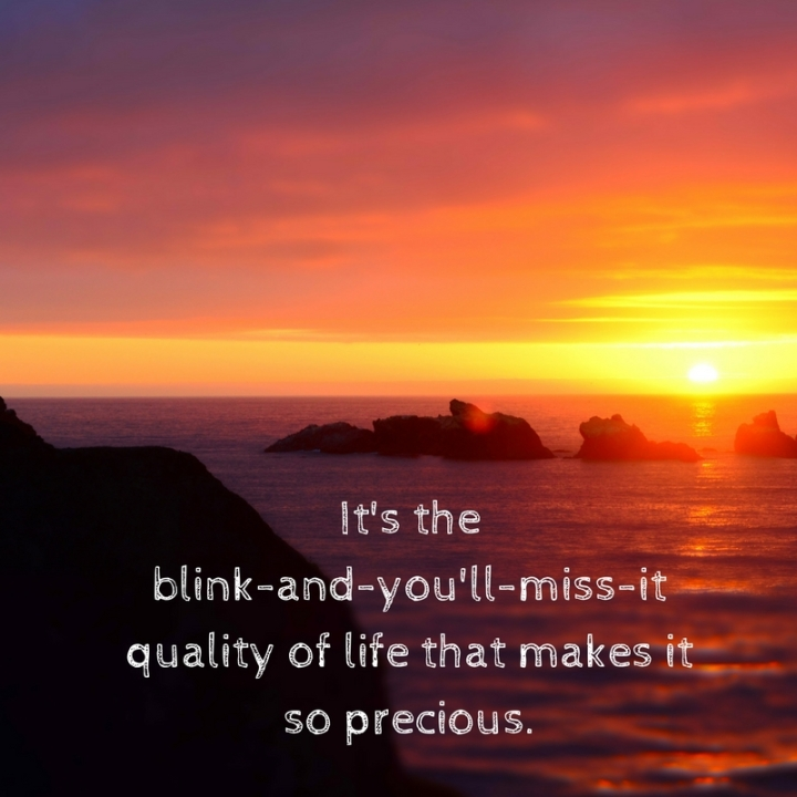 It's the blink-and-you'll-miss-it quality of life that makes it so precious.